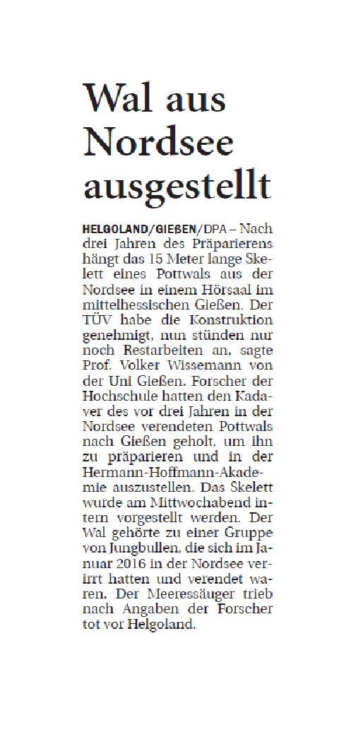 Jeversches Wochenblatt 17.01.2019 VII