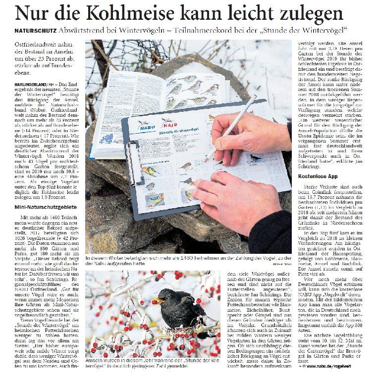 Jeversches Wochenblatt 01.02.2019 II