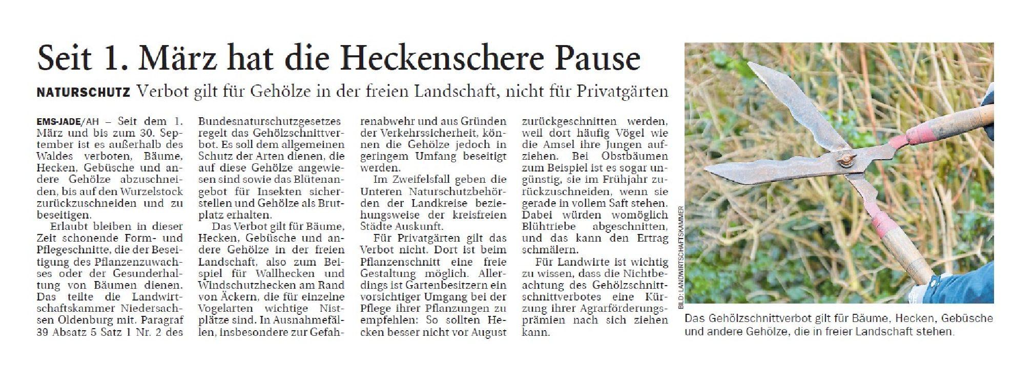 Jeversches Wochenblatt 04.03.2019 II