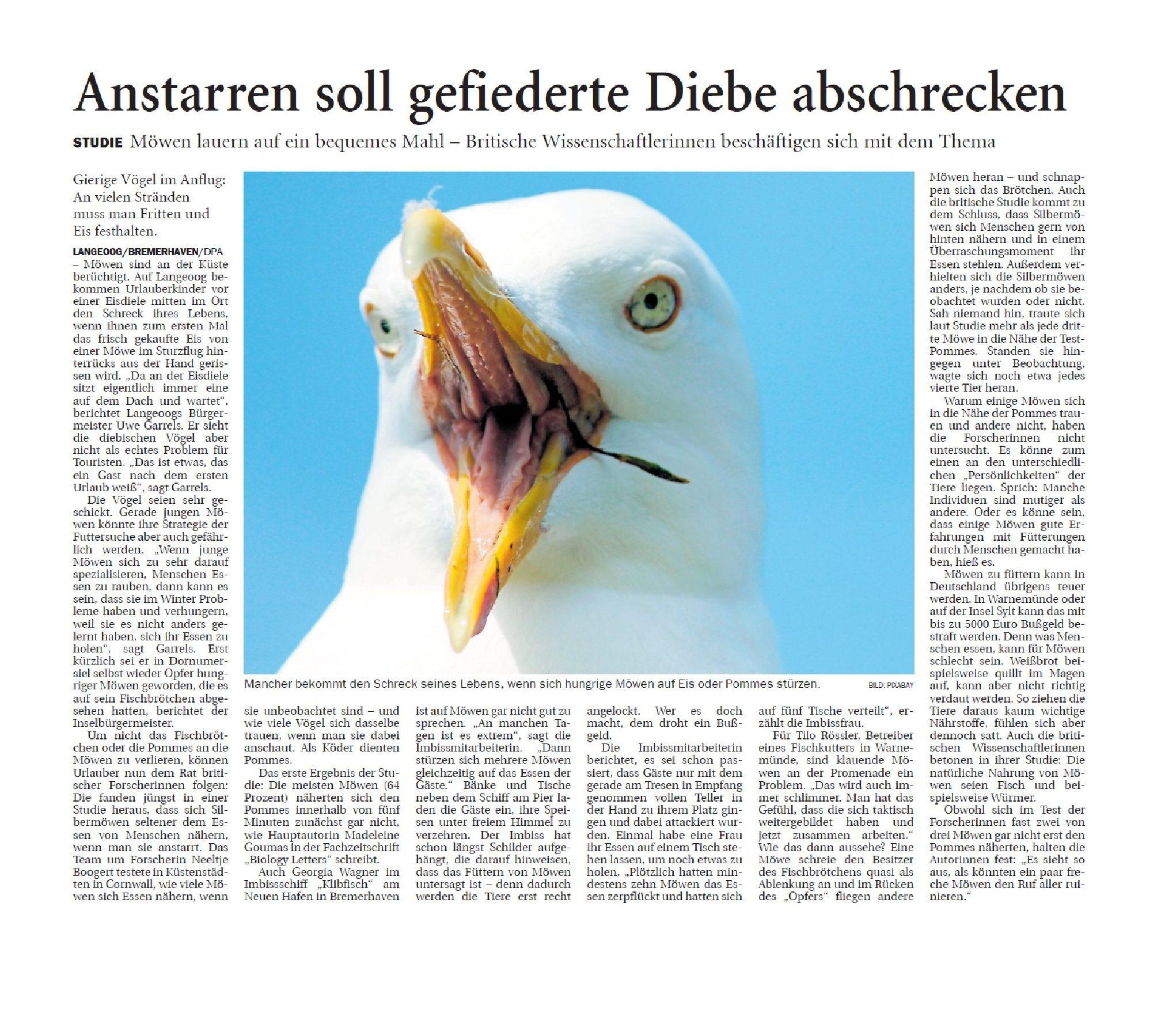 Jeversches Wochenblatt 13.08.2019 II