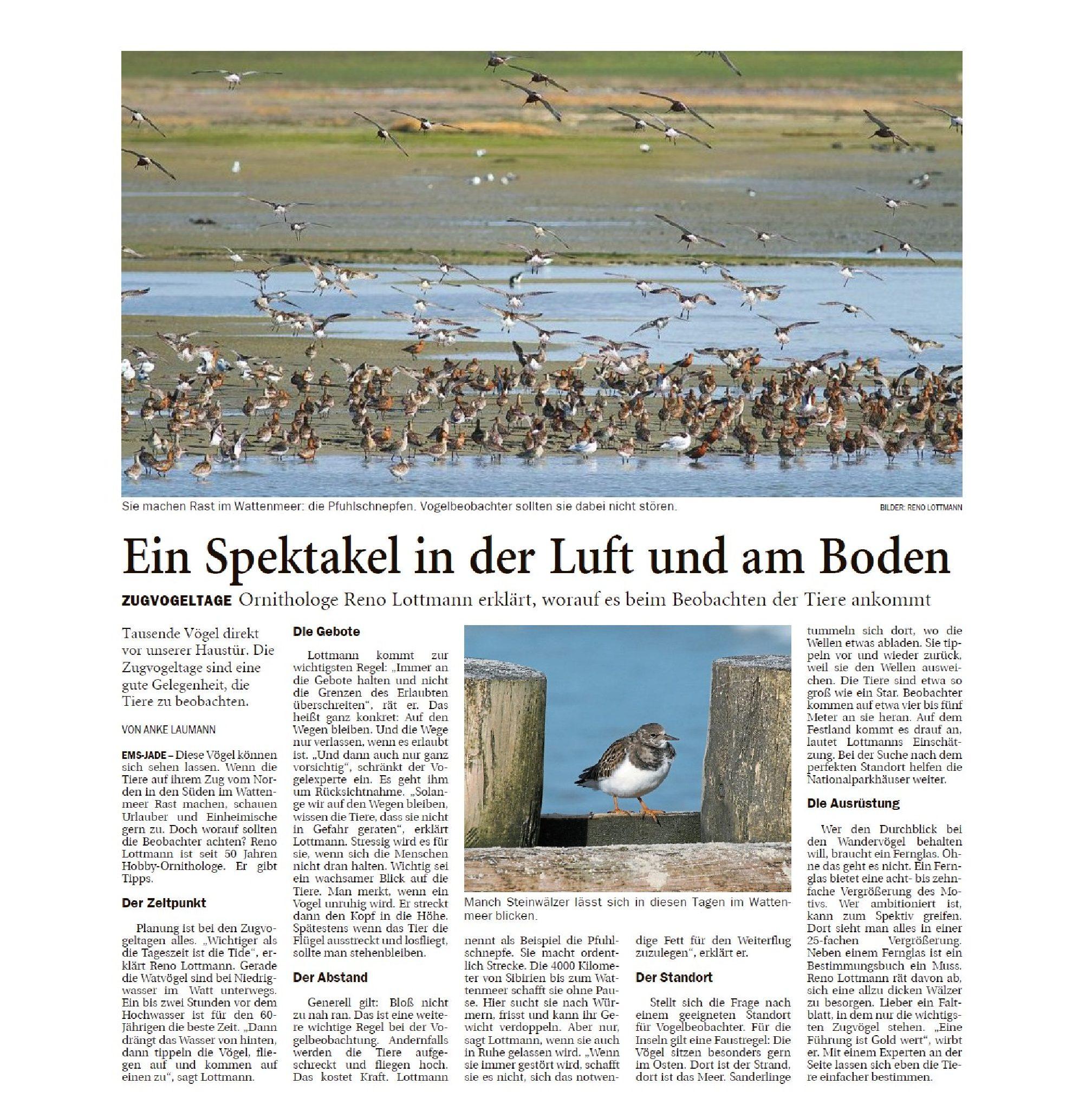 Jeversches Wochenblatt 16.10.2019 III
