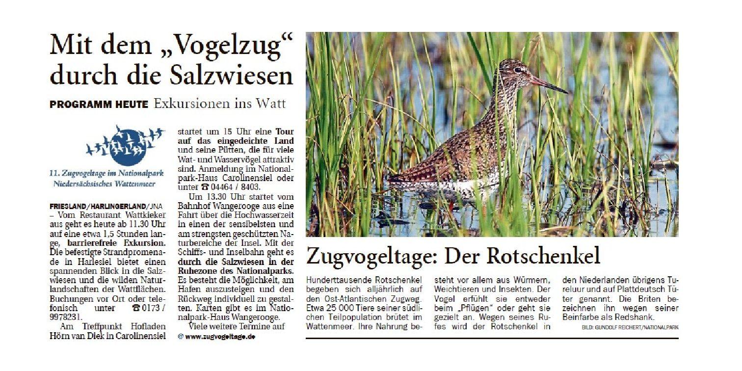 Jeversches Wochenblatt 17.10.2019 II