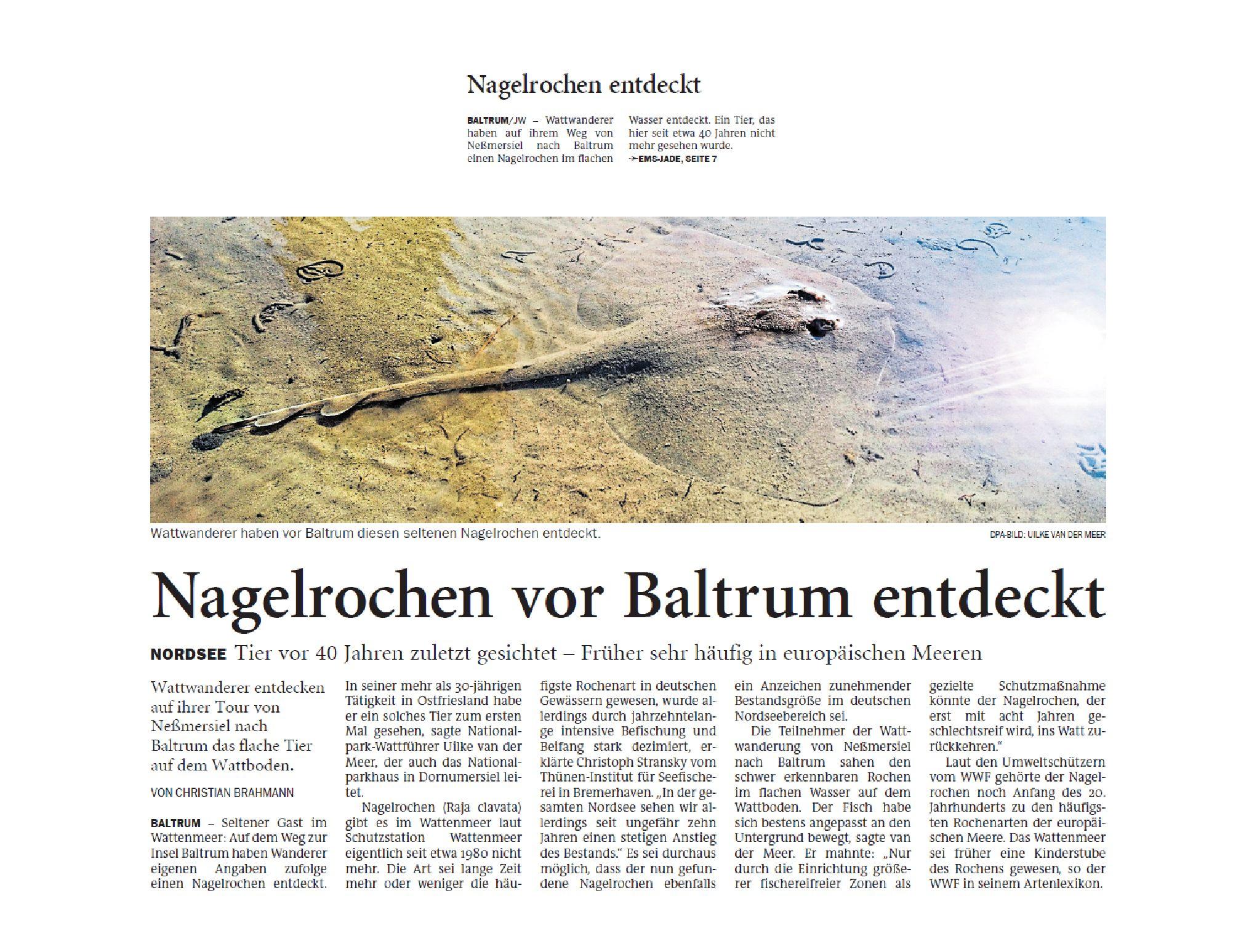 Jeversches Wochenblatt 07.07.2020 III