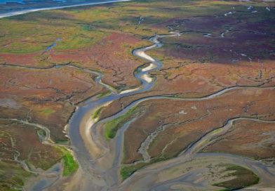 Wandkalender und Ausstellung zeigen das Weltnaturerbe Wattenmeer eindrucksvoll aus der Vogelperspektive