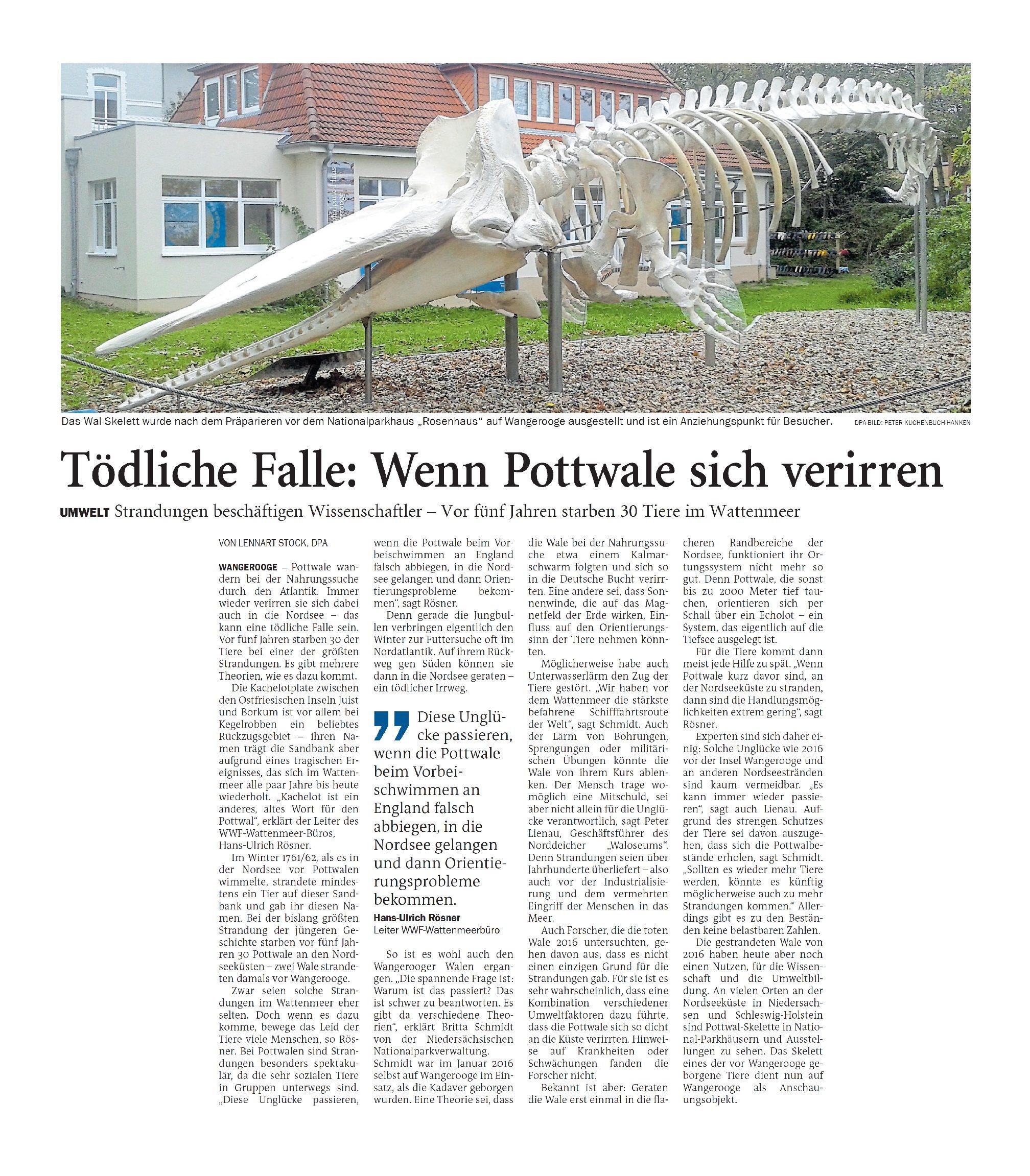 Jeversches Wochenblatt 01.02.2021 III
