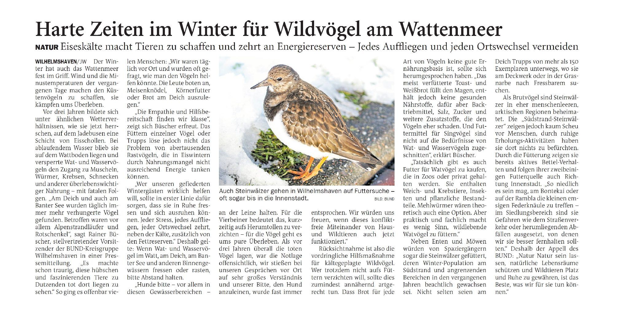 Jeversches Wochenblatt 16.02.2021 III
